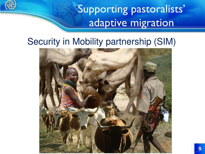 Supporting pastoralists' adaptive migration