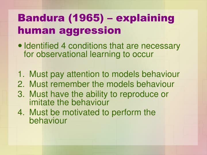 bandura and human behaviors with observational Social cognitive theory and bandura bandura's social learning theory stresses the importance of observational a continuous interaction between behaviors.