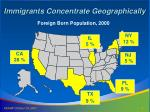 immigrants concentrate geographically