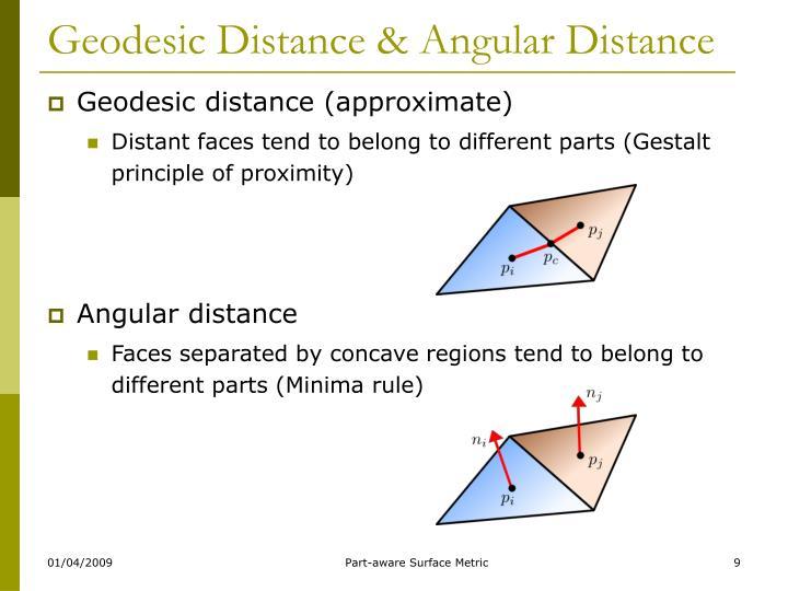 Geodesic Distance & Angular Distance