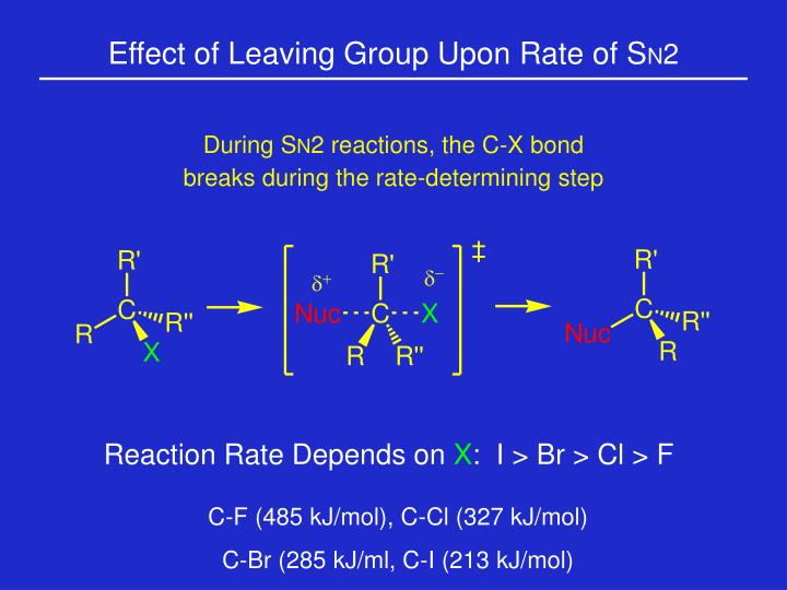 Reaction Rate Depends on