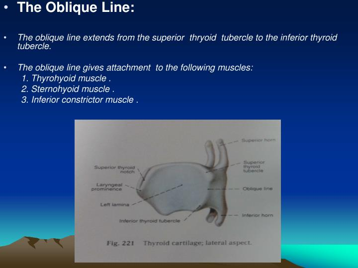 The Oblique Line: