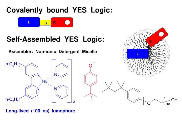 Covalently  bound  YES  Logic: