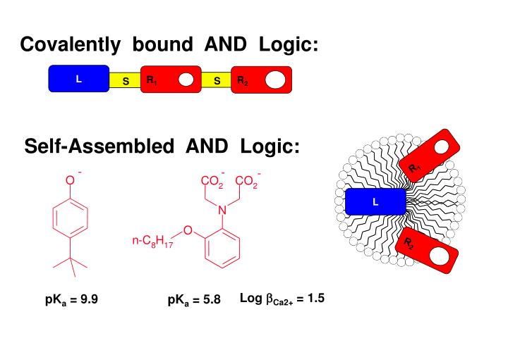 Covalently  bound  AND  Logic: