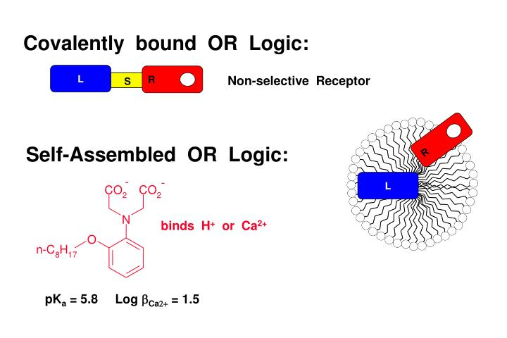 Covalently  bound  OR  Logic:
